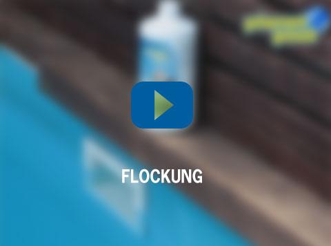 Flockung